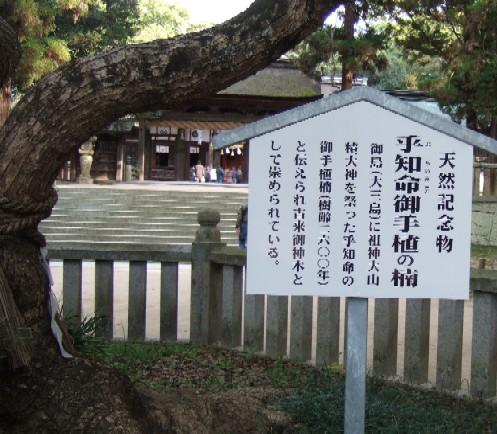 大三島大山神木1.JPG